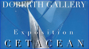 Exposition «Cétacéan» à la Doberth Gallery à Nice – 16>23/01